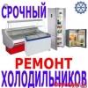 Ремонт холодильников любой марки •тел 10-71-49 тел 56-78-83